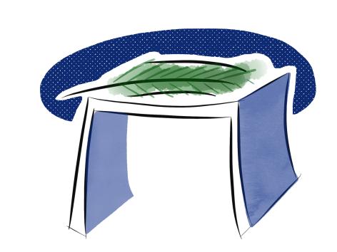 sukkah.png